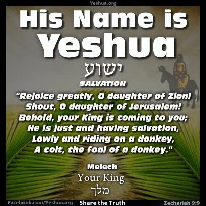 Zechariah 9:9, Melech your King Yeshua