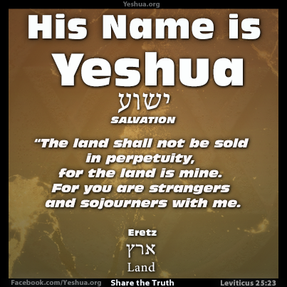 Yeshua : The Land is Mine