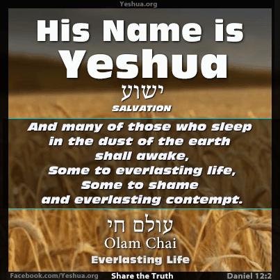 Daniel 12:2 - Everlasting Life / Olam Chai